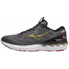 WAVE SKYRISE 2 ( AMS ) / Frost Gray / Gold / Black /